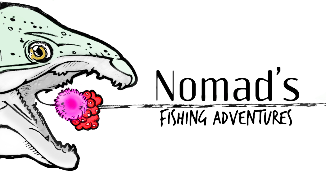 nomads-logo-trans